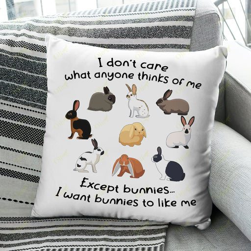 Rabbit - I Want Bunnies To Like Me Square Pillow | Christmas Gift