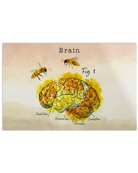 Paramedic Brain Anatomy Horizontal Canvas And Poster | Wall Decor Visual Art