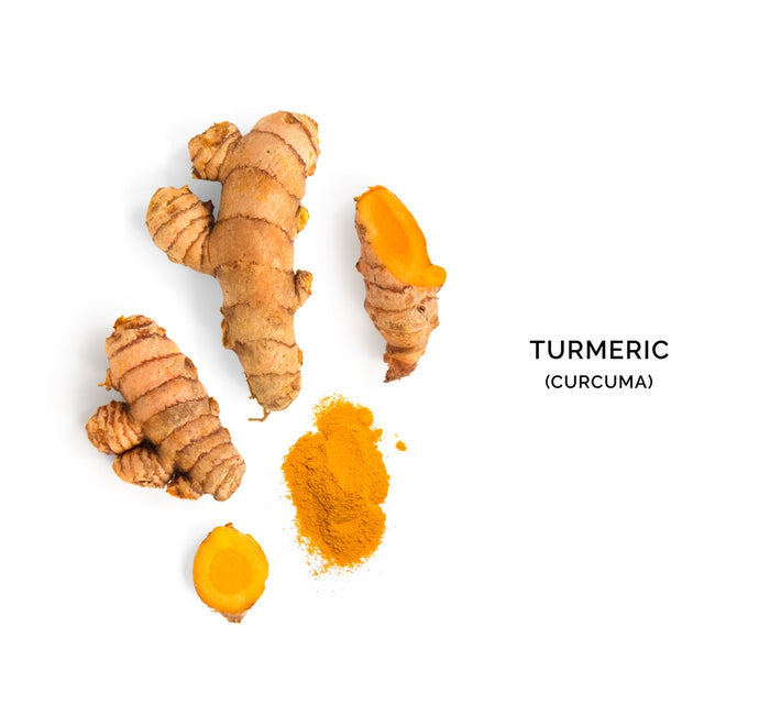 The Synergistic Effects of Turmeric and CBD
