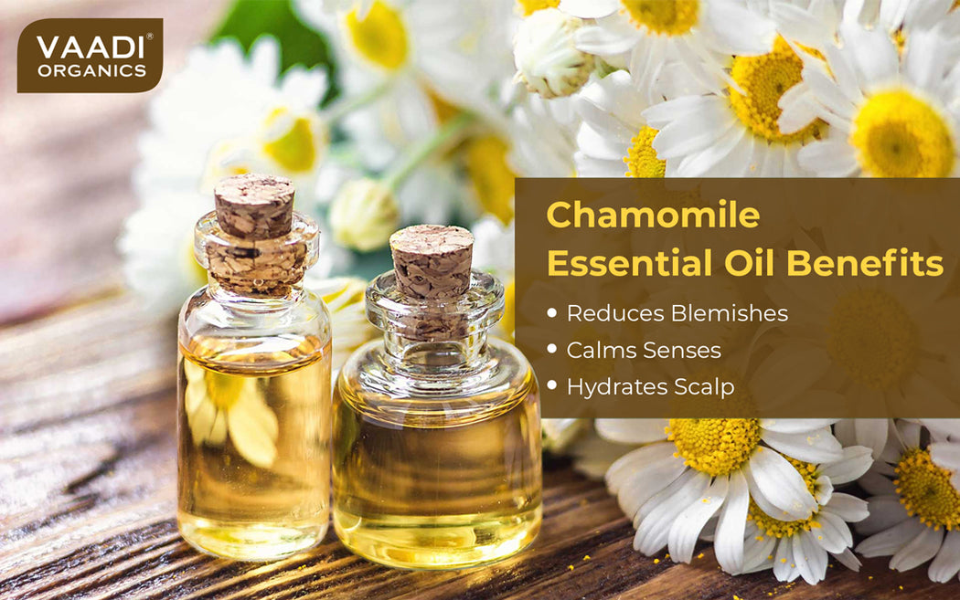 Organic Chamomile Essential Oil - Reduces Blemishes, Evens Skin Tone - Relieves Stress, Better Sleep - 100% Pure Therapeutic Grade (10 ml/ 0.33 oz)