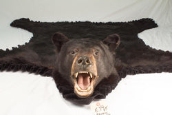 Black Bear - Bill Worb Furs Inc.