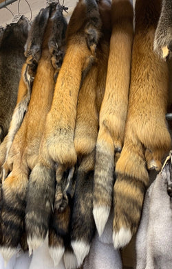 ranch red fox fur pelts