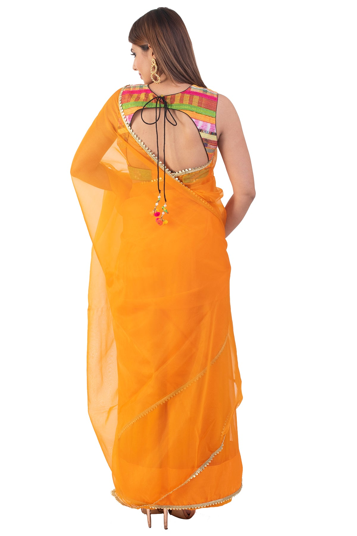 Orange Organza Saree With Multicoloured Blouse