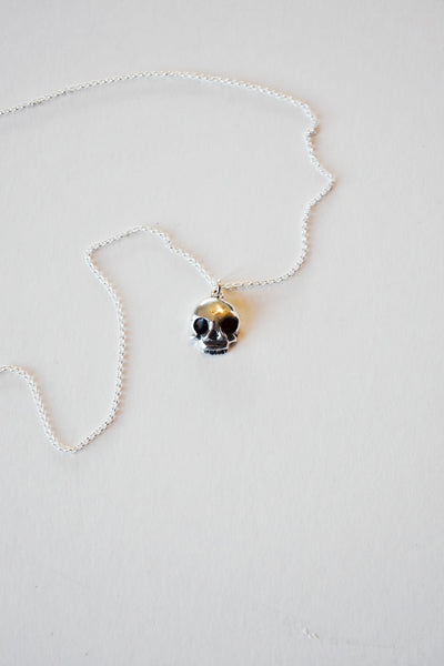 Korai Goods Silver Skull Pendant And Chain