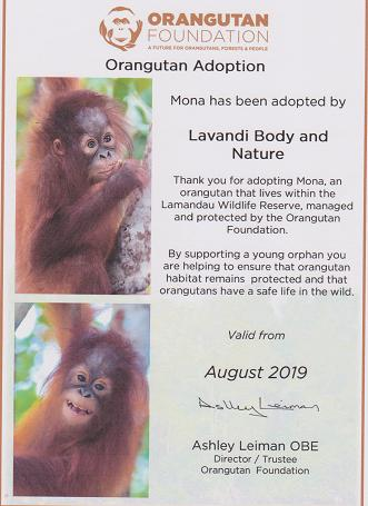 Lavandi will donate 10% of the value of the card to help save Orangutans