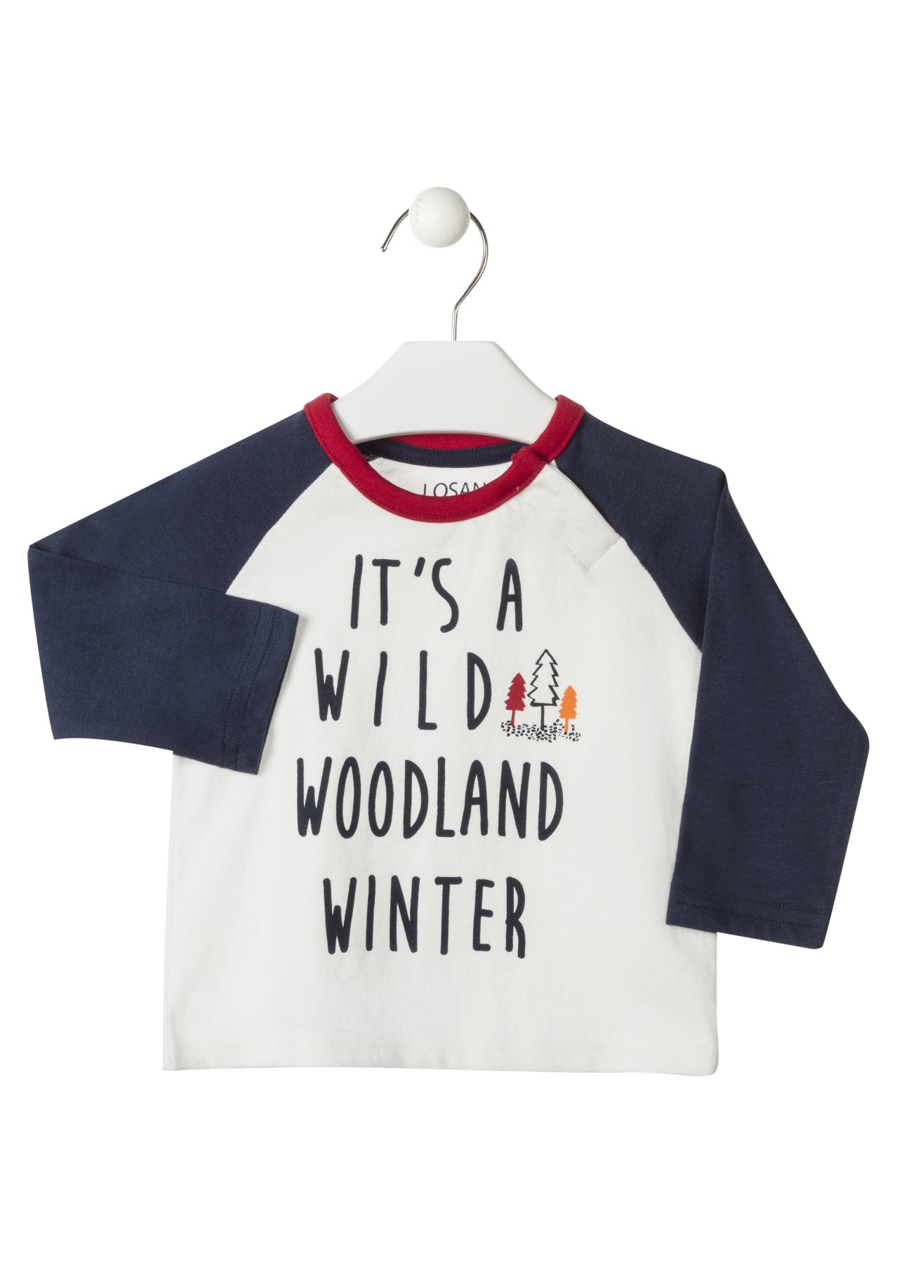 Winter Raglan Shirt - Lullaby's Boutique