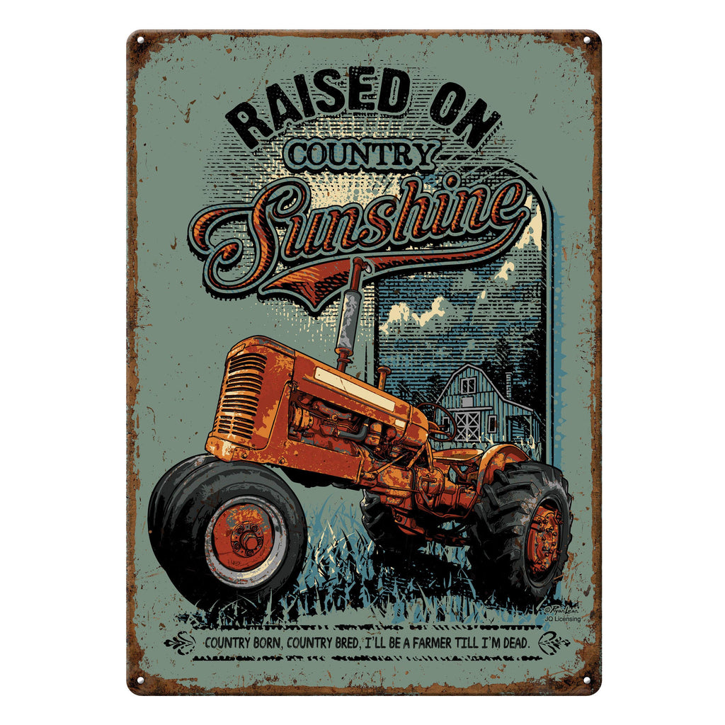 Metal Tin Signs, Funny, Vintage, Personalized 12-Inch x 17-Inch - Raised on Sunshine
