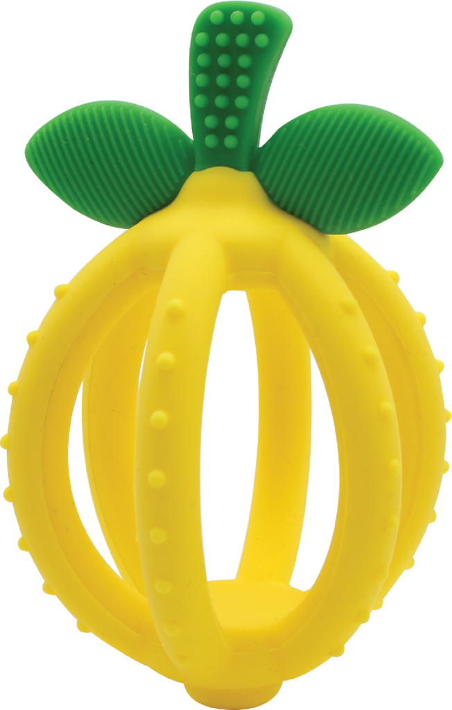Itzy Ritzy Teether