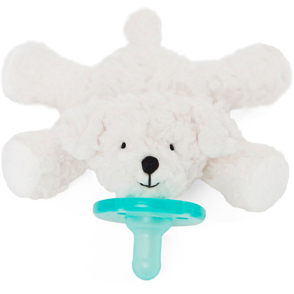 Wubbanub Pacifer Birthday Bichon