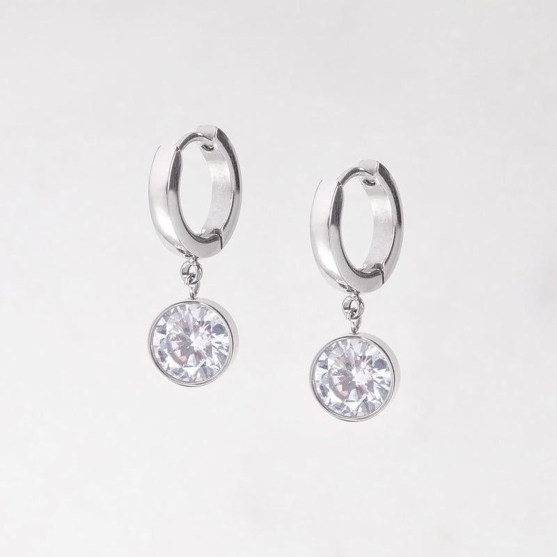 Small Crystal Drop Stainless Steel Earrings