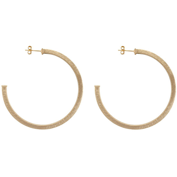 SHEILA FAJL: PERFECT HOOP EARRINGS IN BRUSHED CHAMPAGNE