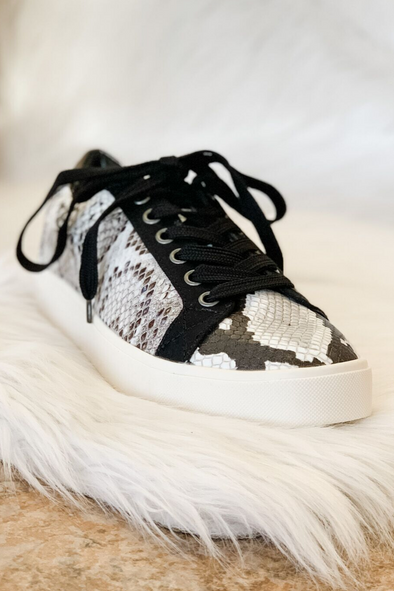 EMBARK SNEAKER IN SNAKE BY DIRTY LAUNDRY