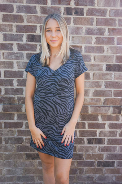 ZEBRA VNECK TEE DRESS IN OMBRE BLUE