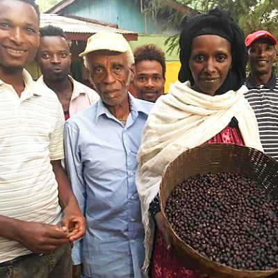 Ethiopia Yirgacheffe  -  Organic Natural - Woman Owned