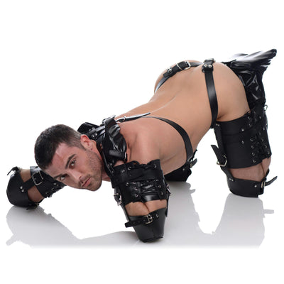 Pet Crawler Bondage Set
