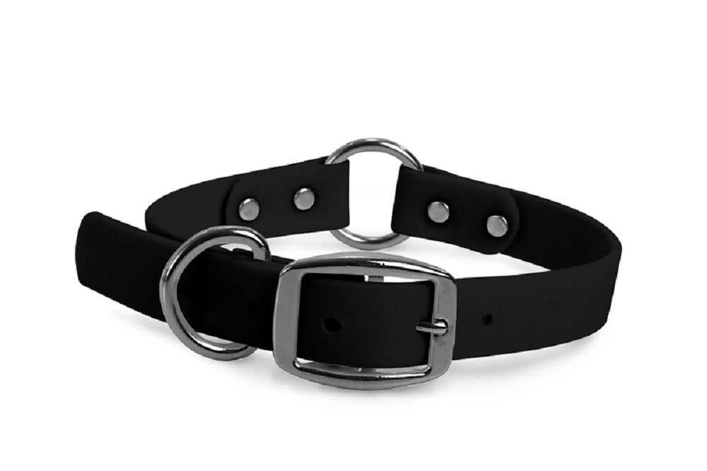 WearHard black center-ring dog collar. Metal buckle. Adjustable. Waterproof. Odor resistant.