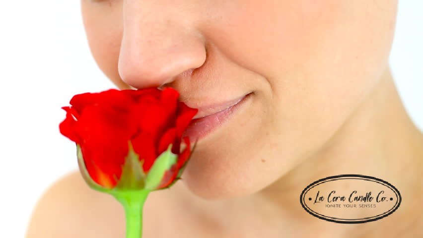 5 Amazing Facts about your sense of smell