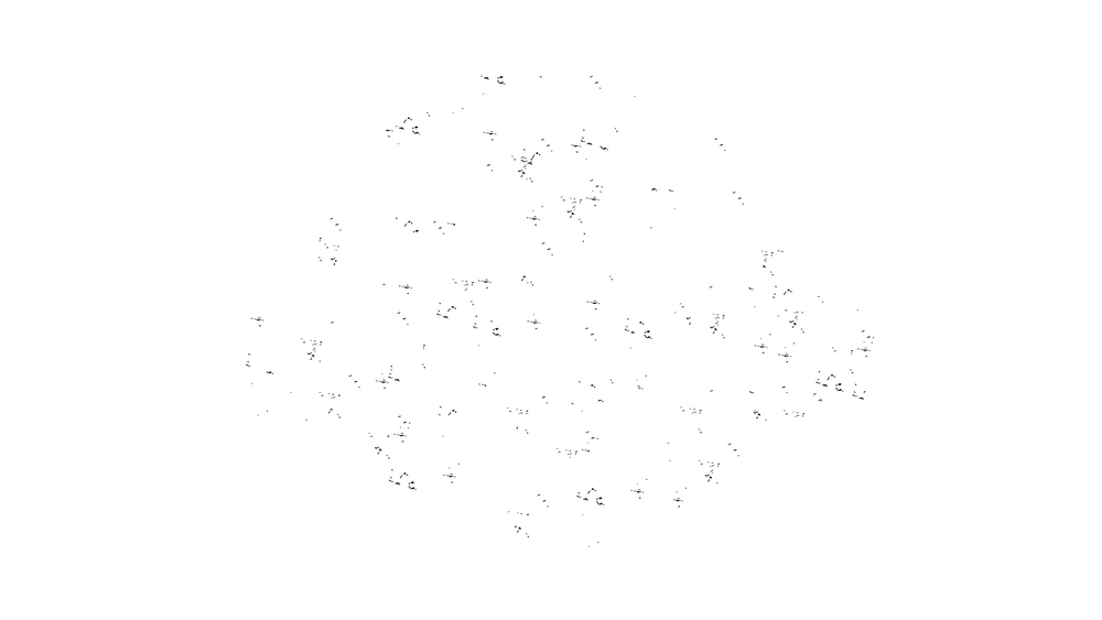 Celtic Beard