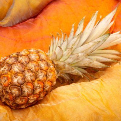 Piña is a traditional fiber made from pineapple leaves