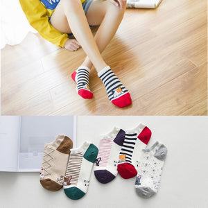 Women Cotton Socks 24 Colors Comfortable Breathable Fashion Women's Socks 5 Pairs/ Lot Womens Cotton Socks - Ecodesignstore