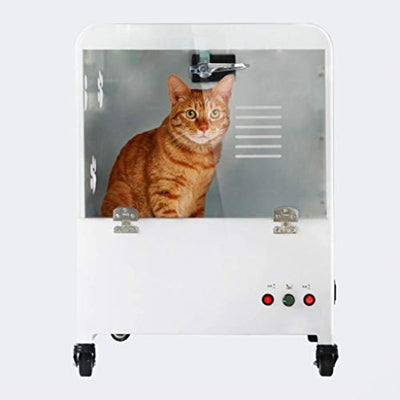 ZENGZHIJIE Pet Drying Water Blowing Machine Dog Bathing Cat Hair Dryer Dryer Small Medium Pet Beauty Salon Dedicated Home Professional (Color : C)