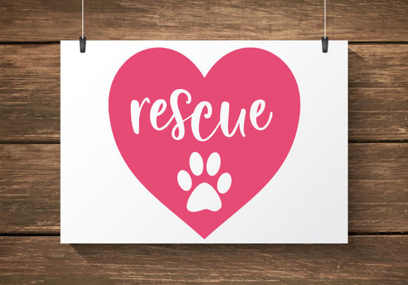 Rescue Car Decal / Sticker