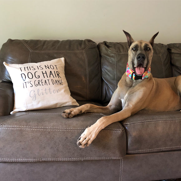This is not DOG HAIR It's Great Dane GLITTER Decorative Pillow