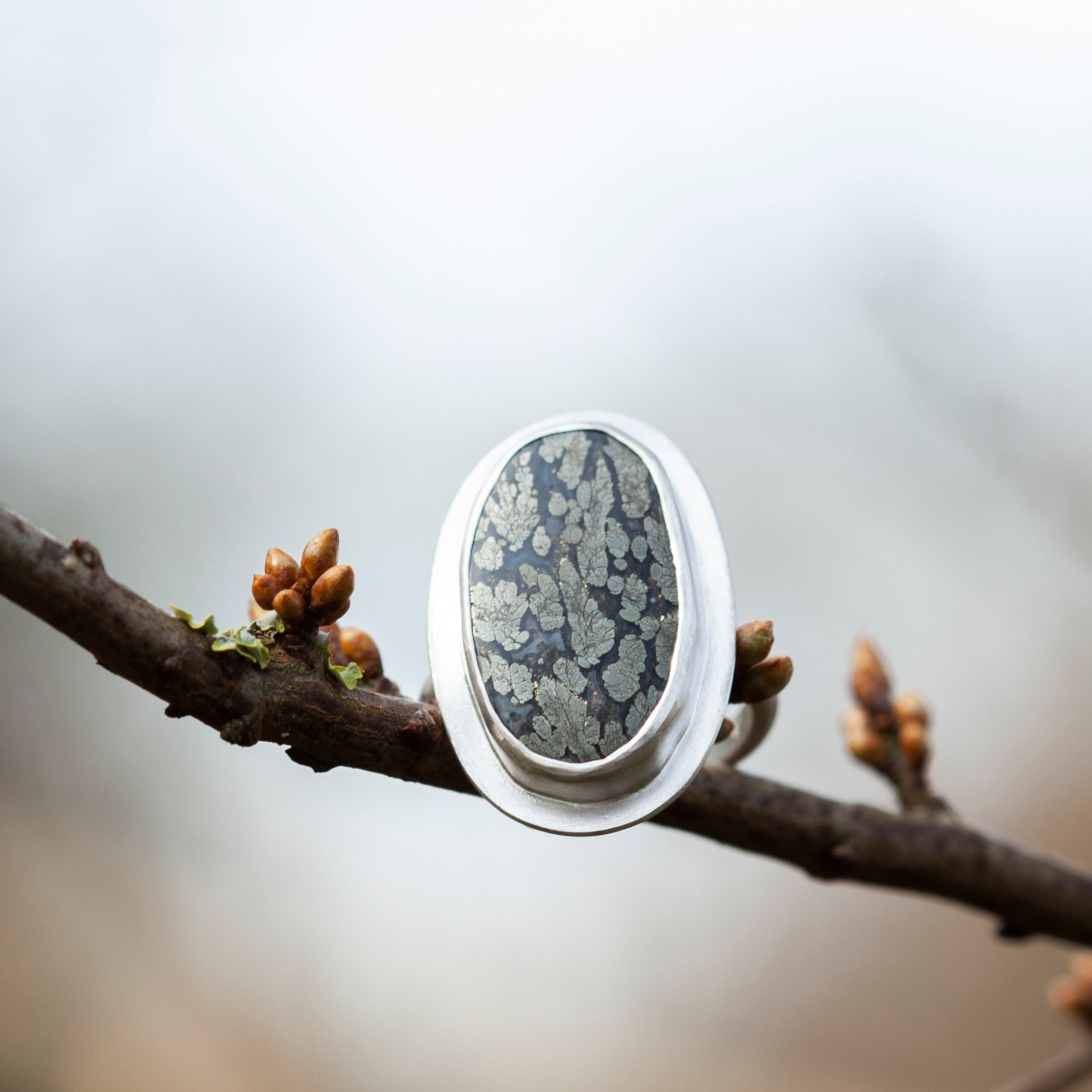 OOAK • Size FR 54 ~ US 7 : Sena ring with pyrite agate (ready-to-ship)