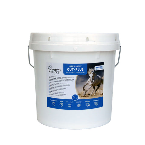 Treatment for Stomach Ulcers in Horses