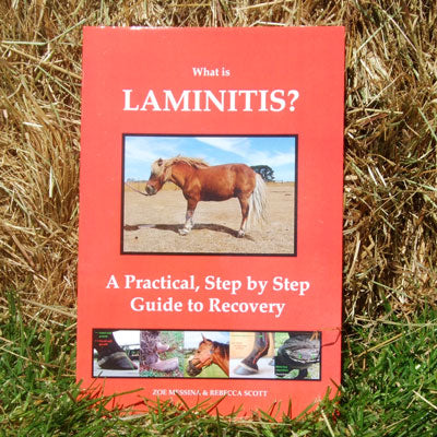 What is Laminitis? - A Practical step by step guide to recovery E-BOOK