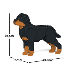 Load image into Gallery viewer, Rottweiler