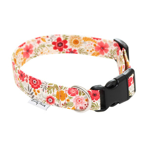 Chester Collar White