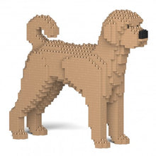 Load image into Gallery viewer, Labradoodle