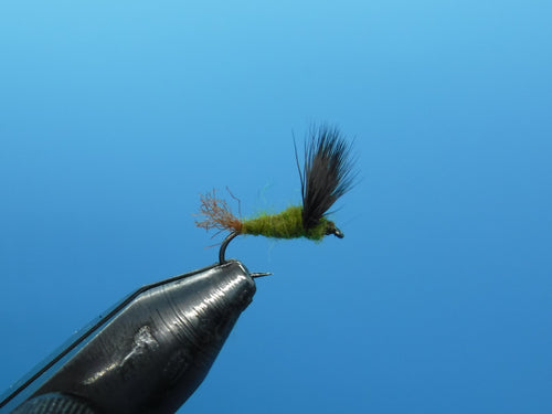 Sparkle Dun Dry Fly