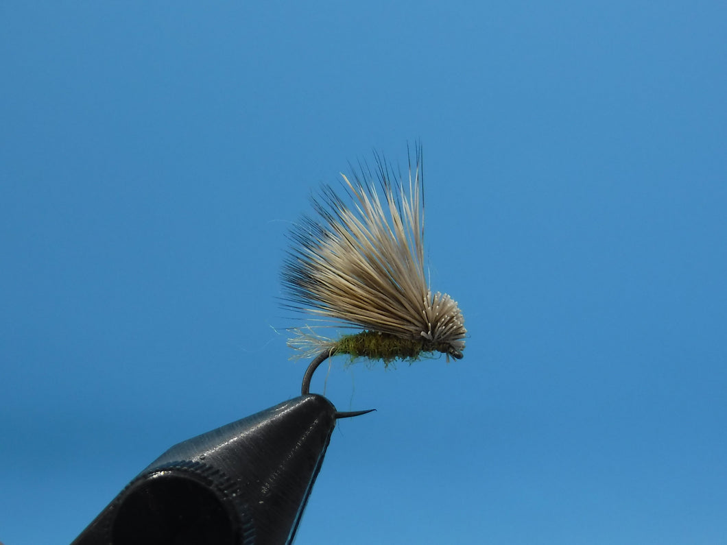Matthew's X-Caddis