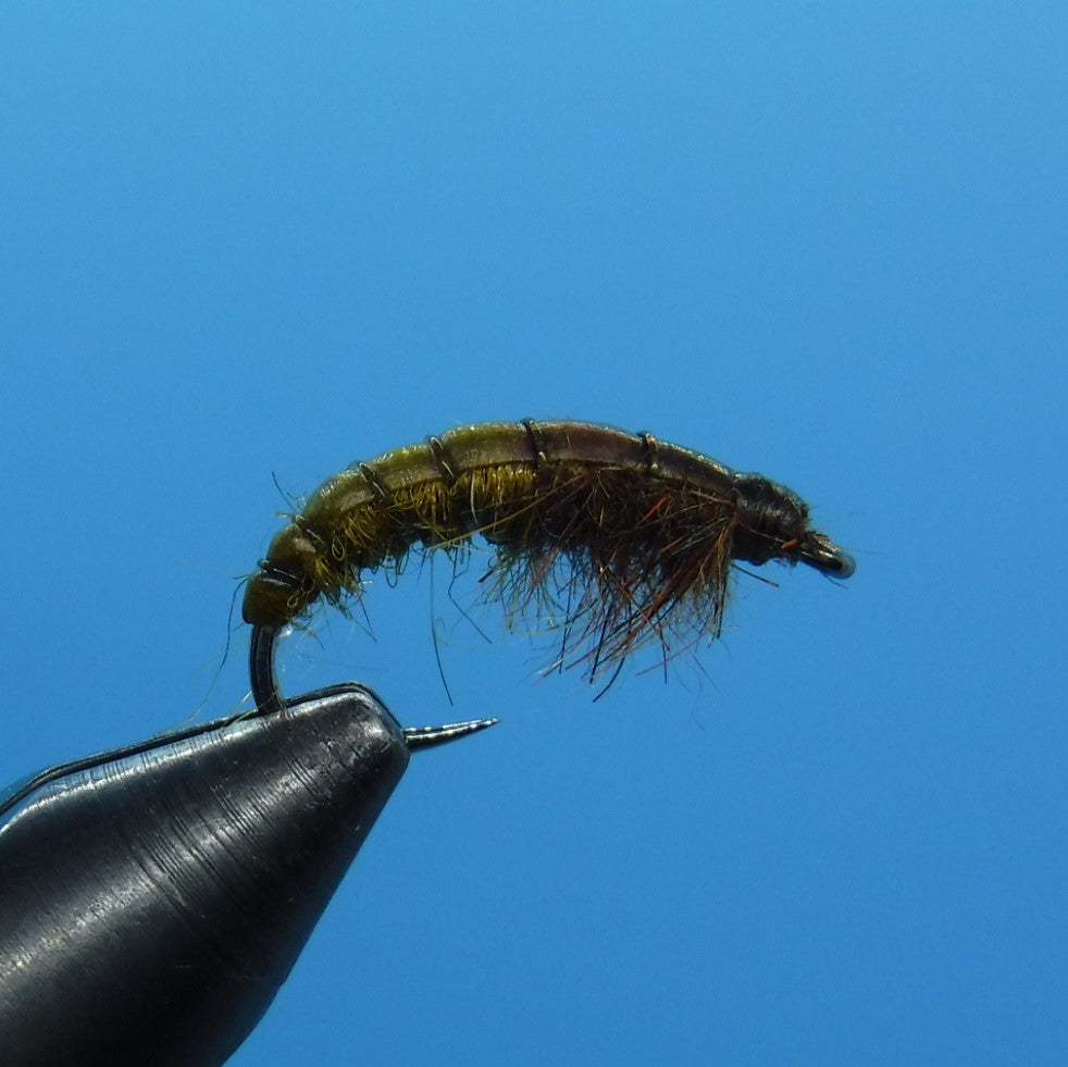 Czech Nymph Fly