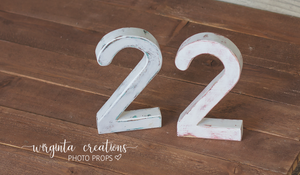 Number 2 Photography Prop. Free-standing. Distressed white. Baby 2nd Birthday Decoration. Wooden distressed number. Cake Smash. Ready to send