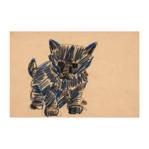 Black and Blue Cat