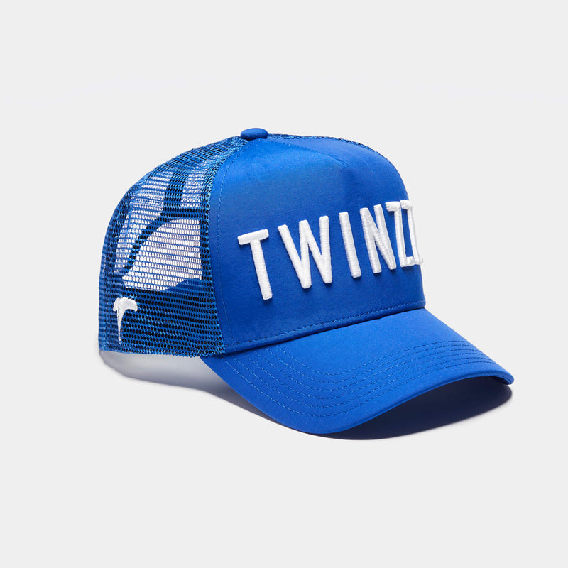 3D Mesh Back Shine Trucker -  Blue / White