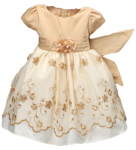 Gold Embroidered Dress & Bonnet