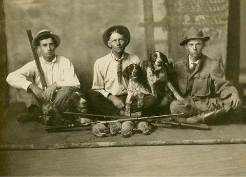 Hunting Dogs Postcard Booklet