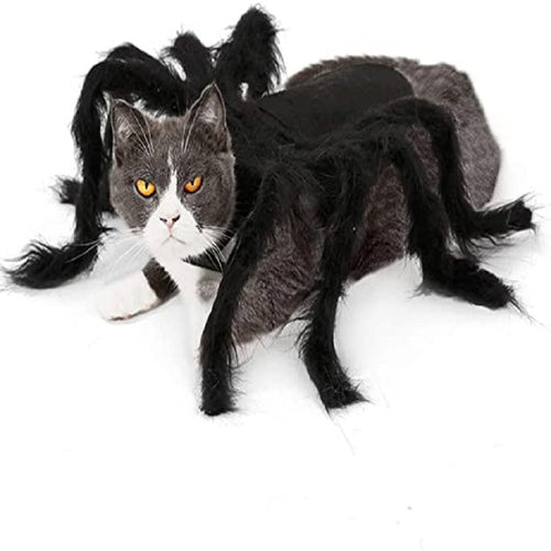 Halloween Spider Clothes For Puppies And Cats - Welcome Halloween With Your Pet 😻