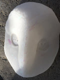 TRANSLUSCENT GLOW IN THE DARK DISCO SPARKLE OWL MASK BLANK