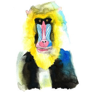 Mandrill 6 by Coral Churchill for $275