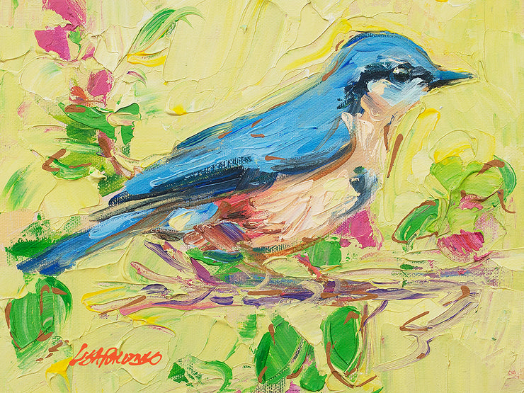 Bluebird and Cherry Blossoms - giclee
