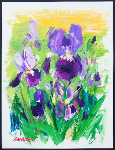 Purple Iris Breeze