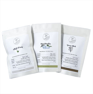 Advanced Tea Sampler