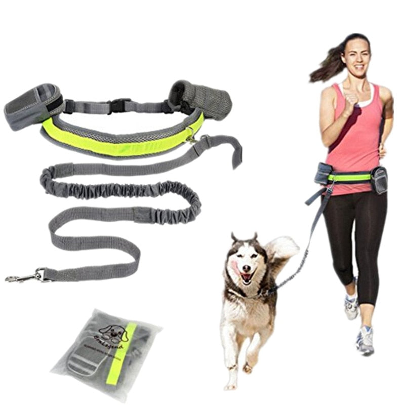 Hands Free Pet Collar Rope Running Jogging Padded Waist Belt Reflective Strip Elastic Leash Perfect Walking Training Dog Leash
