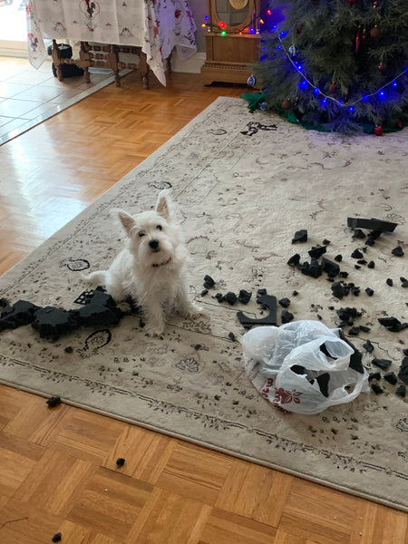 toby making a mess