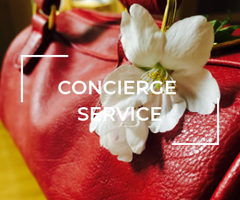 AVAIL THE CONCIERGE SERVICE AT THE PLUSH POSH FOR YOUR PRE LOVED LUXURY ITEMS